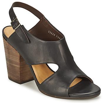 Schoenen Dames Sandalen / Open schoenen Coclico CASPAR Zwart