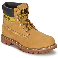 Schoenen Dames Laarzen Caterpillar COLORADO Beige