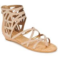 Schoenen Dames Sandalen / Open schoenen Sam Edelman DANA Mokka / Taupe