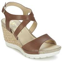 Schoenen Dames Sandalen / Open schoenen Lumberjack SISSI Bruin / Beige