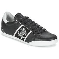Schoenen Heren Lage sneakers Roberto Cavalli 7779 Zwart