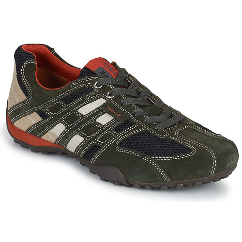 Schoenen Heren Lage sneakers Geox SNAKE Grijs
