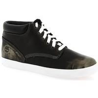 Schoenen Dames Hoge sneakers Timberland Baskets montantes  Femme New Noir