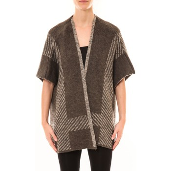Textiel Dames Vesten / Cardigans De Fil En Aiguille Poncho Elina Marron Bruin