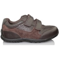 Schoenen Kinderen Derby Timberland LEXINGTON AVENUE FTK MARRON