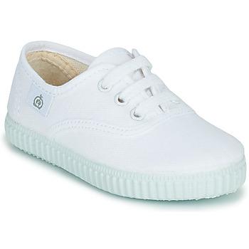 sneakers Citrouille et Compagnie