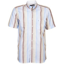 Textiel Heren Overhemden korte mouwen Pierre Cardin 539936240-130 Blauw / Beige / Bruin