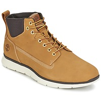 Schoenen Heren Hoge sneakers Timberland KILLINGTON CHUKKA WHEAT Beige