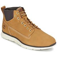Schoenen Heren Hoge sneakers Timberland KILLINGTON CHUKKA WHEAT Graan