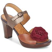 Schoenen Dames Sandalen / Open schoenen Chie Mihara JELIO Bordeau