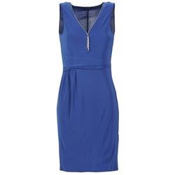 Textiel Dames Korte jurken Morgan ROPOM Blauw