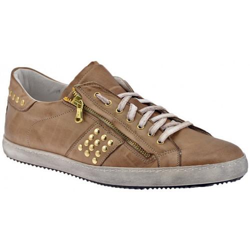 Schoenen Heren Lage sneakers Exton  Beige
