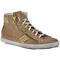 Schoenen Heren Hoge sneakers Exton  Beige