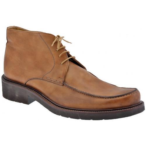 Schoenen Heren Derby Lancio  Bruin