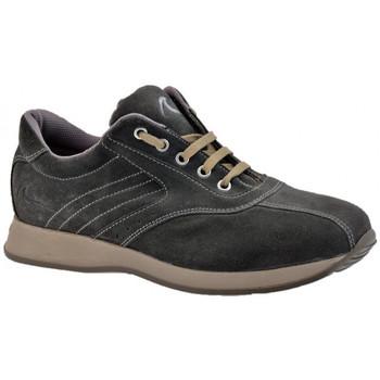 Schoenen Heren Hoge sneakers Docksteps  Grijs
