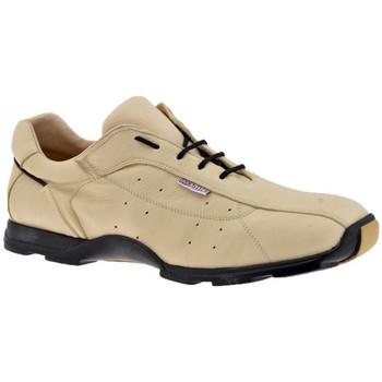 Schoenen Heren Lage sneakers Docksteps  Beige