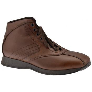 Schoenen Heren Hoge sneakers Docksteps  Bruin