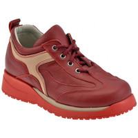 Schoenen Kinderen Hoge sneakers Chicco  Rood