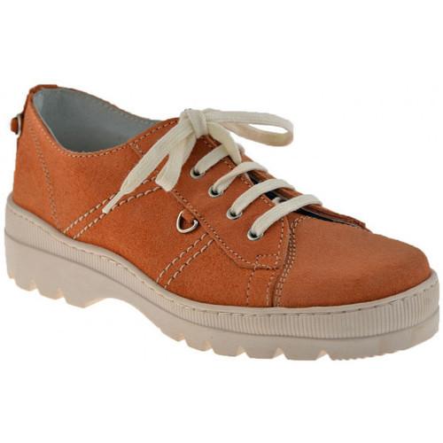 Schoenen Kinderen Lage sneakers Primigi  Multicolour