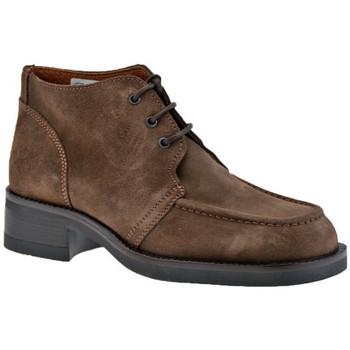 Schoenen Heren Laarzen Stone Haven  Bruin