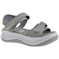 Schoenen Kinderen Sandalen / Open schoenen Fornarina  Grijs