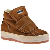 Schoenen Heren Hoge sneakers Rock  Bruin