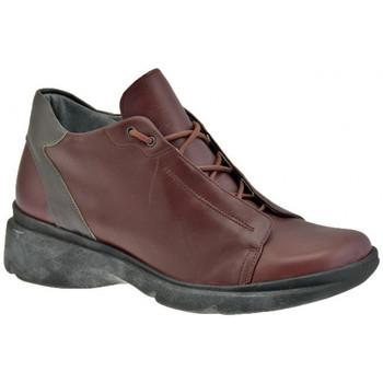 Schoenen Heren Hoge sneakers Tks  Bruin