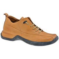 Schoenen Heren Hoge sneakers Pawelk's  Bruin