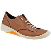Schoenen Heren Lage sneakers Pawelk's  Bruin