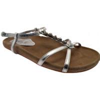 Schoenen Dames Sandalen / Open schoenen Gardini  Zilver