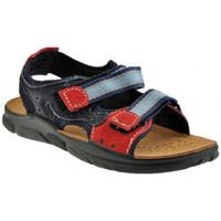 Schoenen Jongens Sandalen / Open schoenen Inblu  Blauw