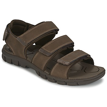 Schoenen Heren Sandalen / Open schoenen Caterpillar ENTRANT Bruin
