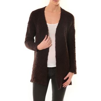 Textiel Dames Vesten / Cardigans De Fil En Aiguille GILET ZINKA 1186 MARRON Bruin