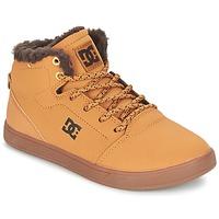 Schoenen Kinderen Hoge sneakers DC Shoes CRISIS HIGH WNT B SHOE WD4 Graan / Chocolat