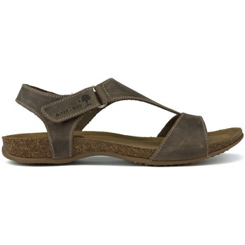 Schoenen Dames Sandalen / Open schoenen Interbios TUSSENTIJDS ANATOMISCHE SANDALEN 4420 PARDO