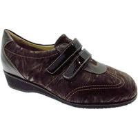 Schoenen Dames Lage sneakers Calzaturificio Loren LOL8050m marrone