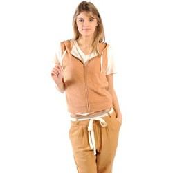 Textiel Dames Sweaters / Sweatshirts American Vintage ZIPPER CAPUCHE PRA193E11 ROUILLE CHINE Oranje