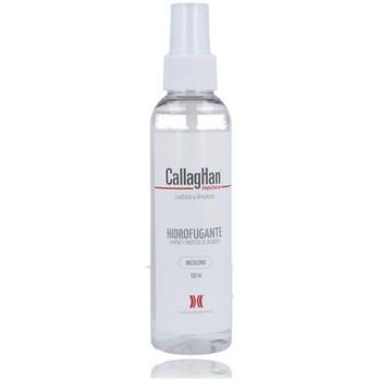 Accessoires Schoenen accessoires CallagHan Callaghan Hidrofugante 84 Impermeabilizante Other
