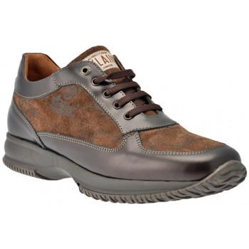 Schoenen Dames Hoge sneakers Alviero Martini  Other