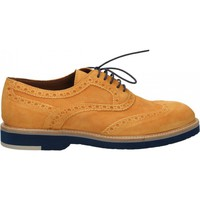 Schoenen Heren Derby Wexford VELOUR MISSING_COLOR