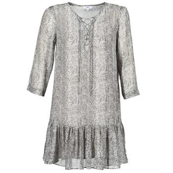 Textiel Dames Korte jurken Suncoo CIARA Grijs