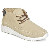 Schoenen Heren Hoge sneakers Asfvlt YUMA Beige