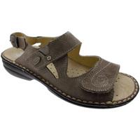 Schoenen Dames Sandalen / Open schoenen Calzaturificio Loren LOM2595ta tortora