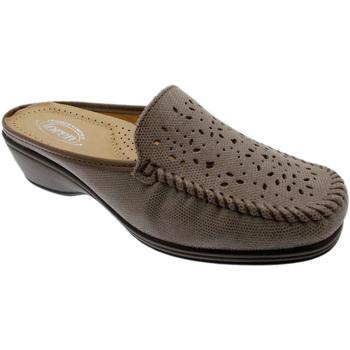 Schoenen Dames Leren slippers Calzaturificio Loren LOK3953ta tortora