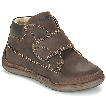 Schoenen Jongens Laarzen Primigi DEMIAN Bruin