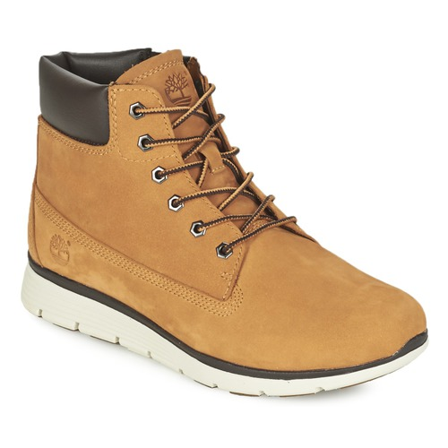 Schoenen Kinderen Hoge sneakers Timberland KILLINGTON 6 IN Graan