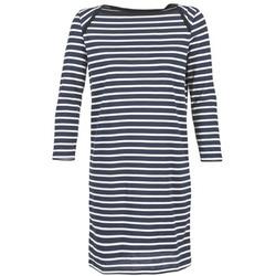 Textiel Dames Korte jurken Petit Bateau EREMATE Marine / Wit