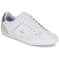 Schoenen Heren Lage sneakers Lacoste CHAYMON 316 1 Wit / Grijs