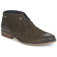 Schoenen Heren Laarzen Tom Tailor REVOUSTI Bruin