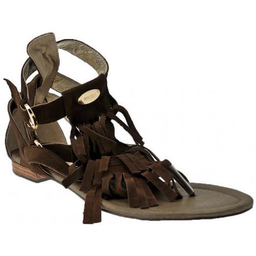 Schoenen Dames Sandalen / Open schoenen Swish  Bruin